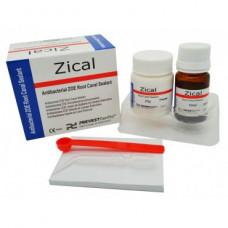 Zical Root Canal Sealer