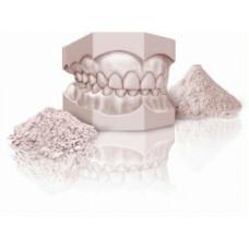 gypsum cast